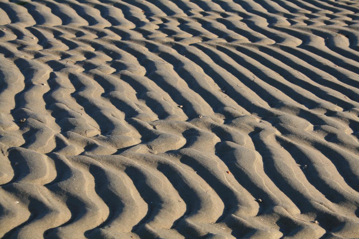 Strukturen im Sandwatt (Serie: Watt im Wandel)